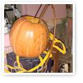 pumpkin brew